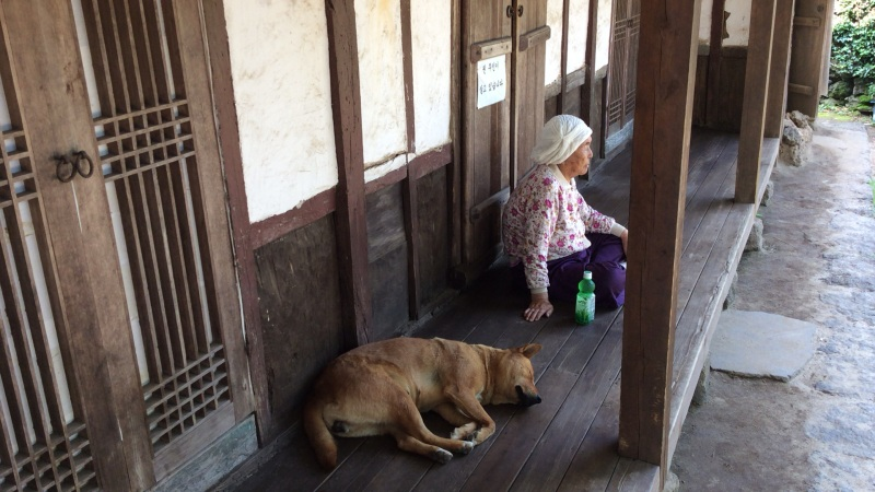 Owner and a dog, both sleeping